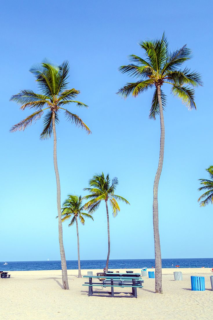 #4 - Fort Lauderdale, FL - This Floridian getaway once popular with partying co-eds has made efforts to become more family-friendly. Check the Travel Hacker blog for travel tips for March and April breakers.