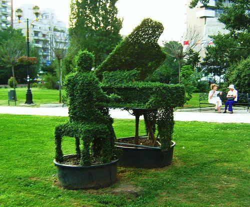 Art topiari, pianista. Bucarest