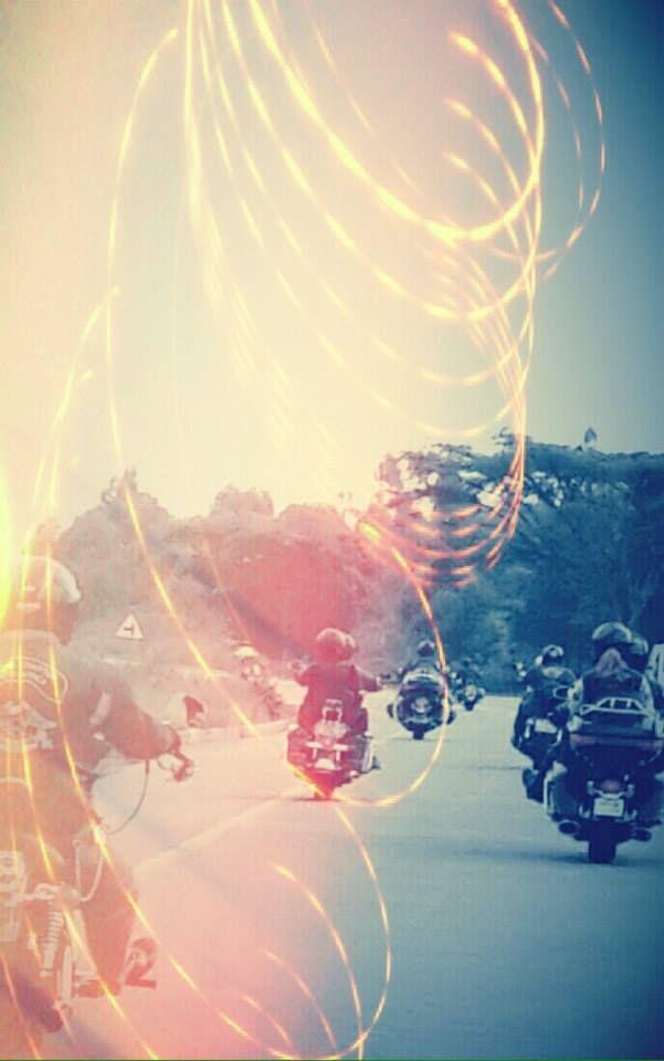 A flash of light, a roar of an Harley in the Lowveld #B5HD #Hoedspruit