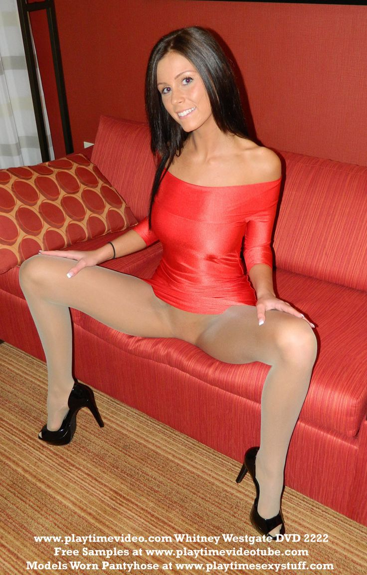 pussies in pantyhose