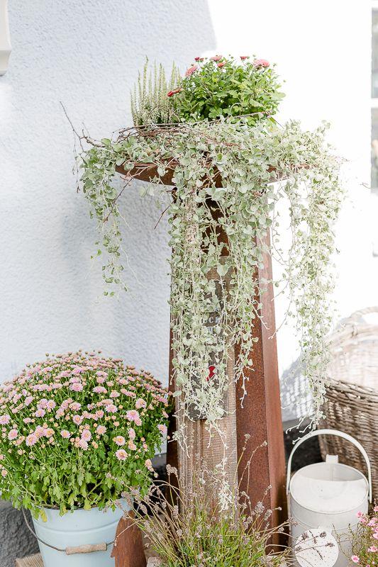 Die besten 25+ Herbstbepflanzung Ideen auf Pinterest - pflanzgefase aus moos