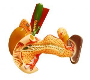 Cómo tratar la inflamación de la vesícula biliar