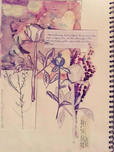 Art Sketchbook - mono print botanicals, soft watercolour background // Jemma Frater