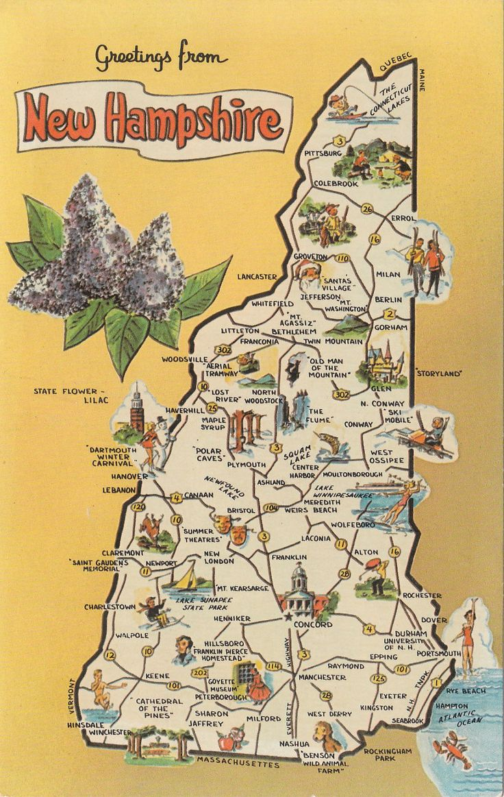 Vintage Greetings from New Hampshire state postcard with map
