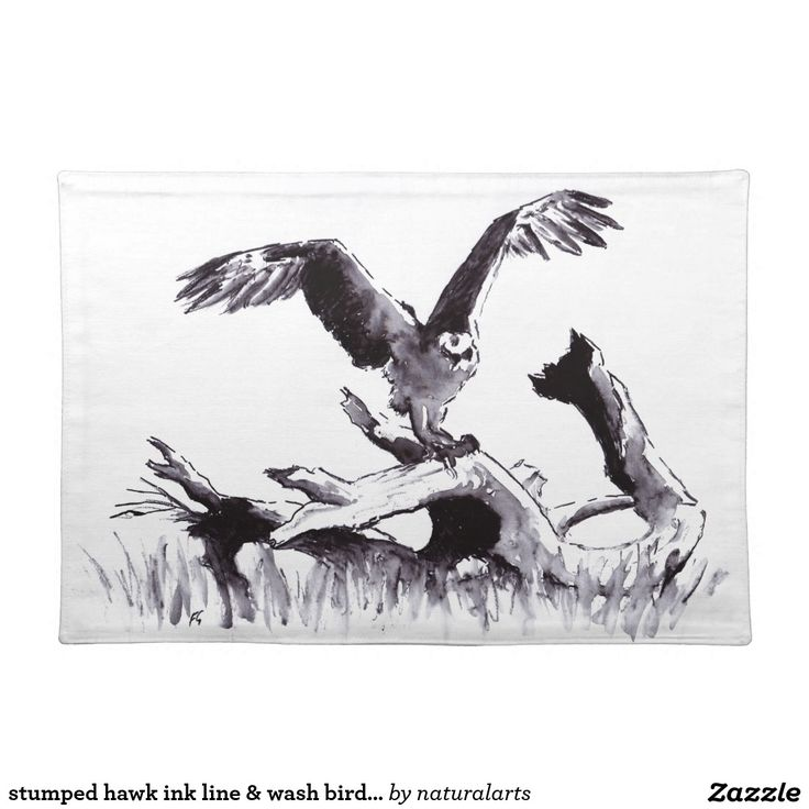 stumped hawk ink line & wash bird drawing cloth place mat