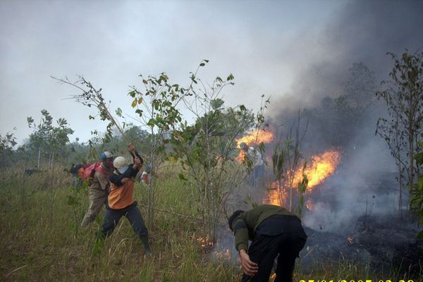 Planet Funder - Borneo and Sumatra Fire Emergency https://planetfunder.org/projects/SIES_Fires