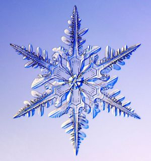 snowflake photography: