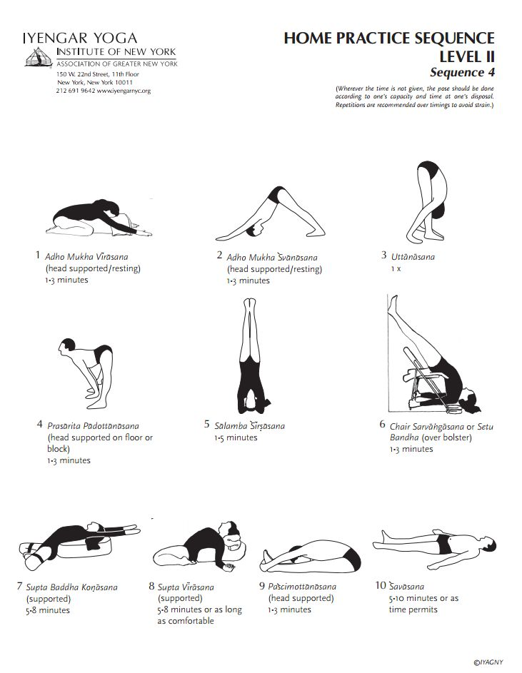 Iyengar Yoga Institute of New York Home Practice Sequence Level 2 Sequence 4
