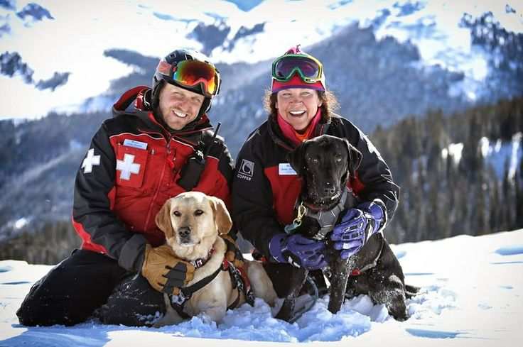 Avalanche Dogs of Copper Mountain