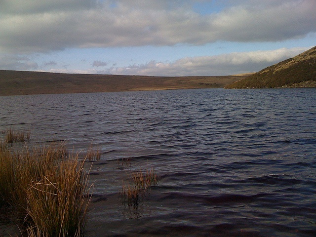 Had my first ever outdoor swim in a wetsuit here - with Dan and Gabs of @goneswimmingdan fame: Aled Isaf reservoir by NoSoma, via Flickr