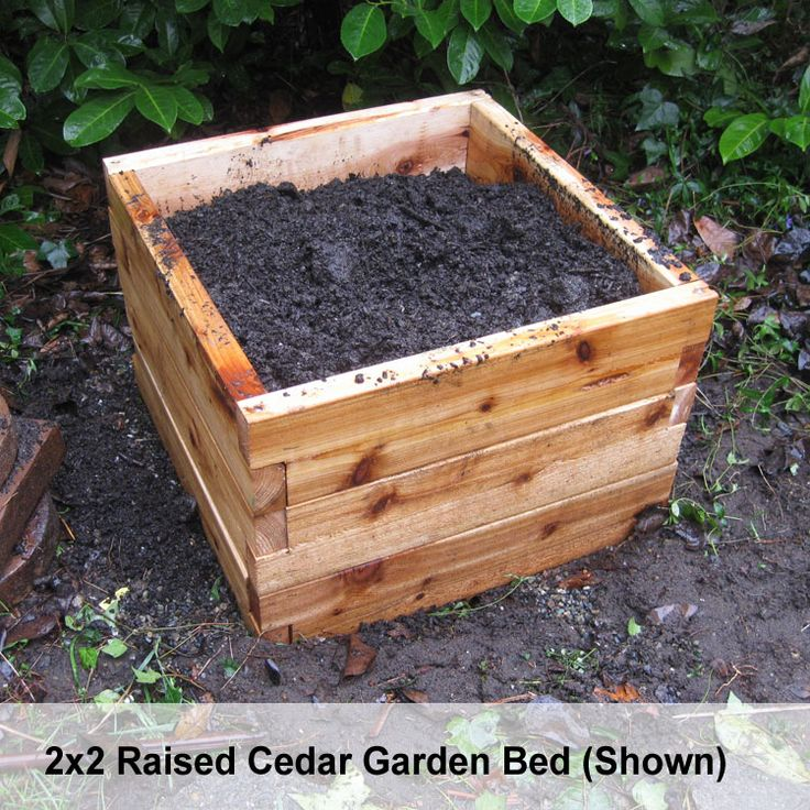 Some kind of Garden Kit (dirt, too?) so I can grow some veggies on our porch :D