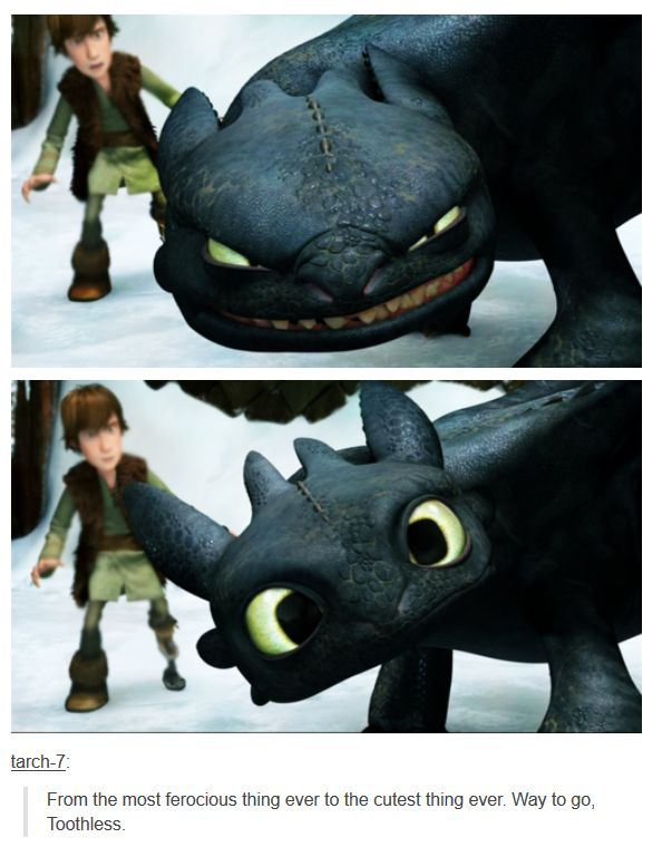 How to train your dragon from the series when he gets his independently functioning new tail