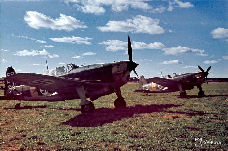 Day War Photo