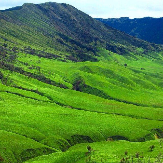 Good Morning !  Location : Teletubbies Hill, Mt, Bromo, East Java.  #EXPLORINGEASTJAVA1415