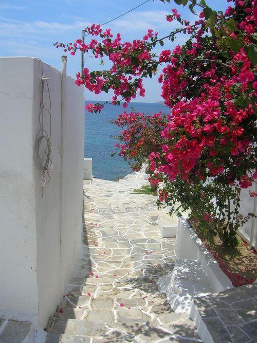 Greece, Sifnos www.windmillbellavista.gr