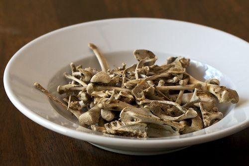 Making Organic Bone Meal at Home