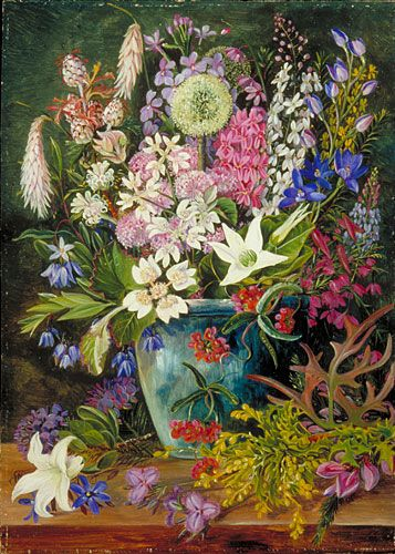 Wild Flowers of Albany, West Australia by Marianne North Date painted: early 1880s Oil on board, 47.3 x 34 cm Collection: Royal Botanic Gardens, Kew