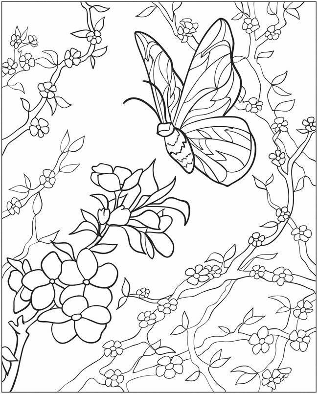dover coloring pages to print met bloemen en vlinders coloring page