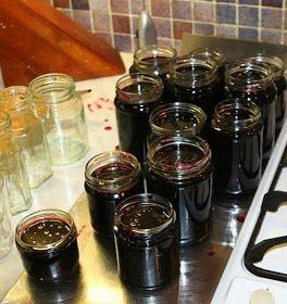 Cuisine maison, d'autrefois, comme grand-mère: Recette de gelée de baies de sureau noir et vertus pour la santé
