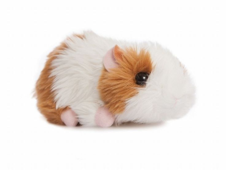 AURORA WORLD 15cm GUINEA PIG CAVY SOFT TOY WITH GIFTS OF SMILES TAG - NEW PLUSH