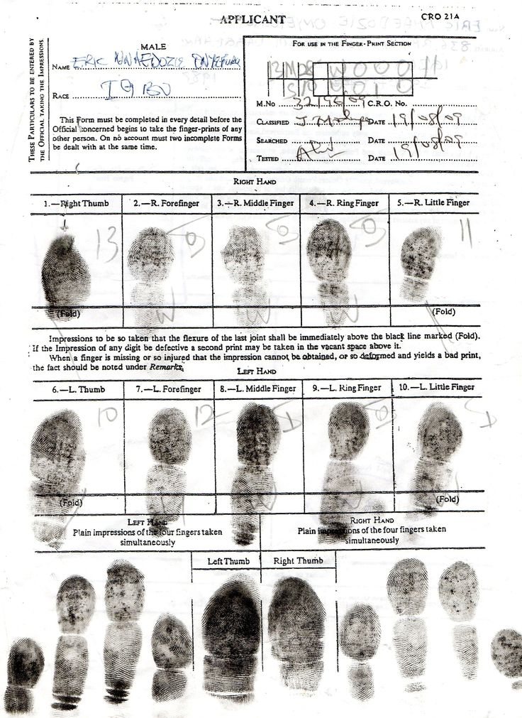 sample police report forms run background checks