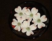 Gumpaste Dogwood Flowers: Beauty Gumpast, Etsy Pcfteam, Dogwood Flower, Etsy Artisan, Cakes Flower, Blossoms Cornus, Dogwood Blossoms, Gumpast Dogwood, Flower Blossoms