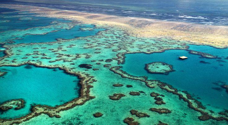 Marea Barieră de Corali se află în suferință, însă ea ar putea fi salvată de la dispariție cu ajutorul norilor luminoși, creați artificial.
