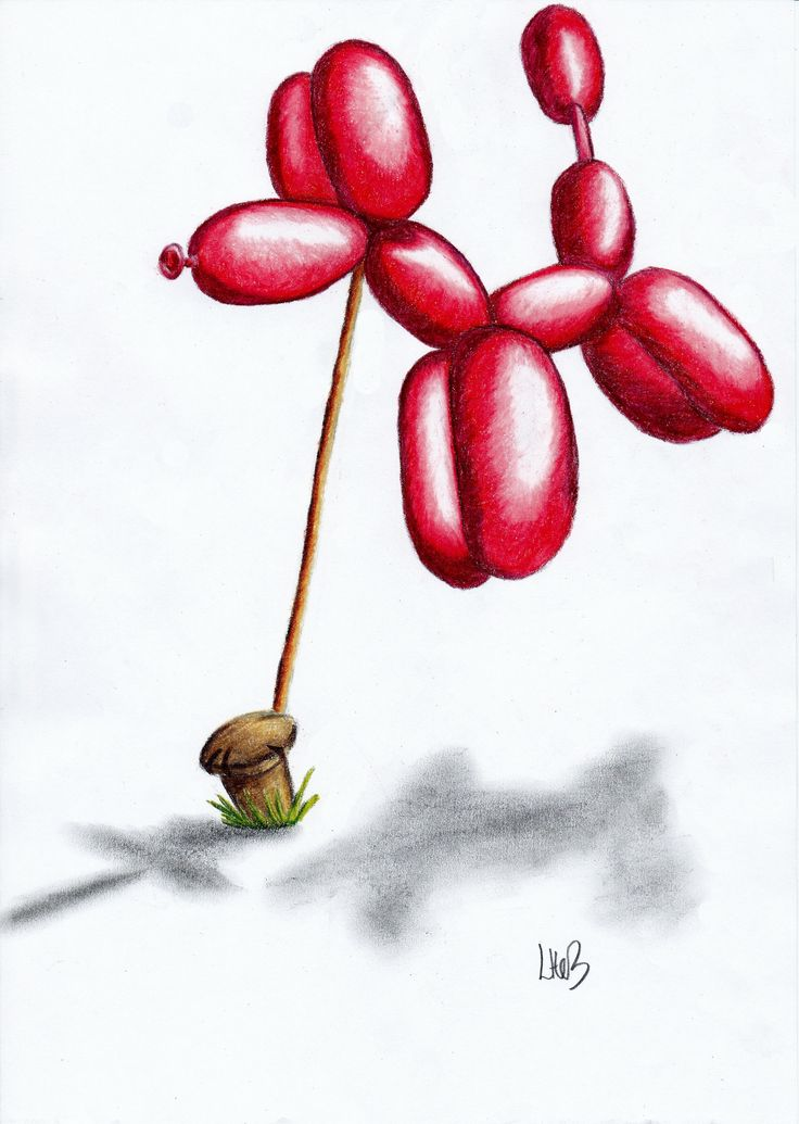 'Balloon dog' colour pencil drawing on copy paper. Watch ...