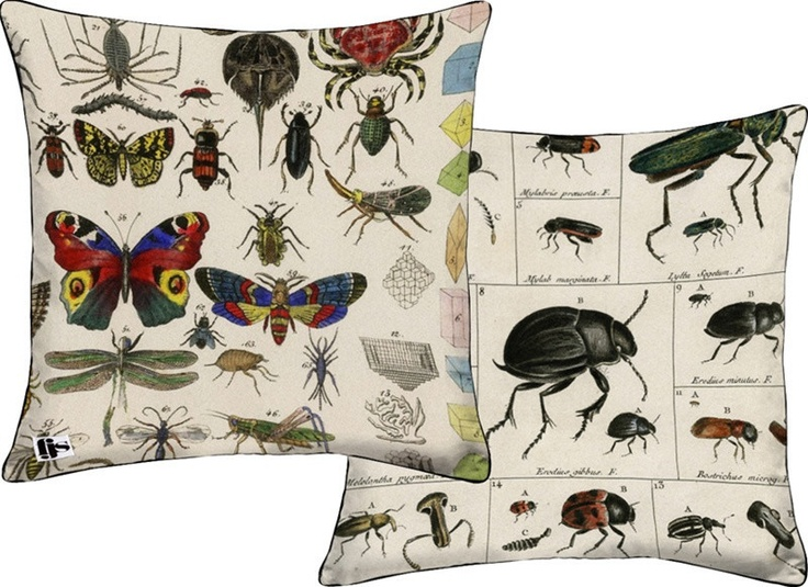 Bug Two Sided Pillow design by FJS