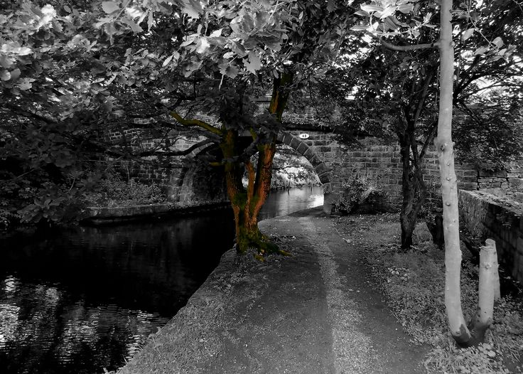 Taken near Littleborough, Lancashire. The picture shows the Rochdale Canal under Bridge 49 Ealees Road. You can view my blog at, www.colingreenphotography.blogspot.co.uk/