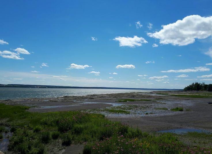 Île d'Orléans. #nature #fleuve #river #fleuvestlaurent #stlawrenceriver #îledorleans #Summer #Été #Quebec