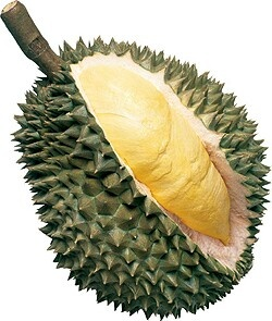 Durian - King of fruits. Either you hate it or you love it. <3 :)