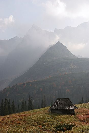 Gasienicowa Valley (Hala Gąsienicowa) the Tatra Mountains, Poland