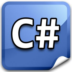 computer C# programming