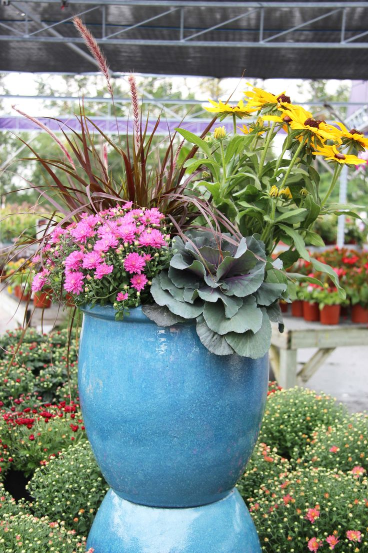 15 best Amazing Planters! images on Pinterest | Autumn decorations ...