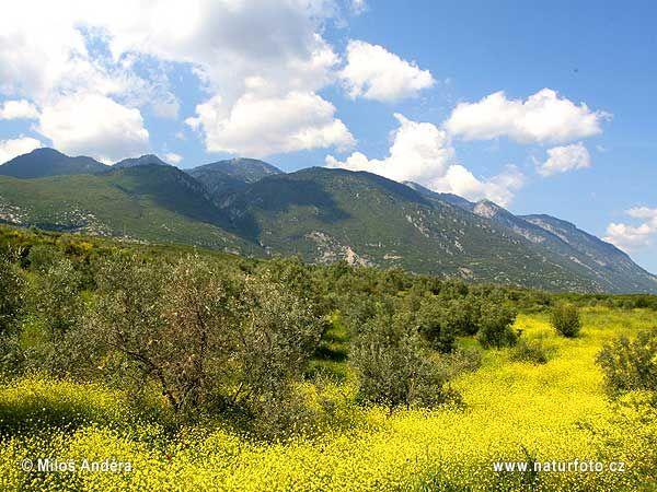 National park Oiti #outdoorsgr