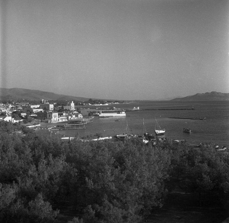 Walter Schröder, Αίγινα, μερική άποψη 1950-1971,