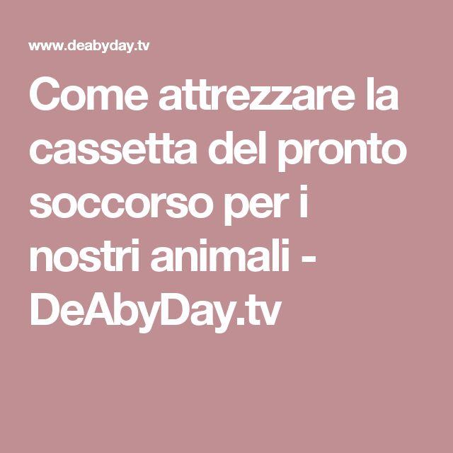 Come attrezzare la cassetta del pronto soccorso per i nostri animali - DeAbyDay.tv