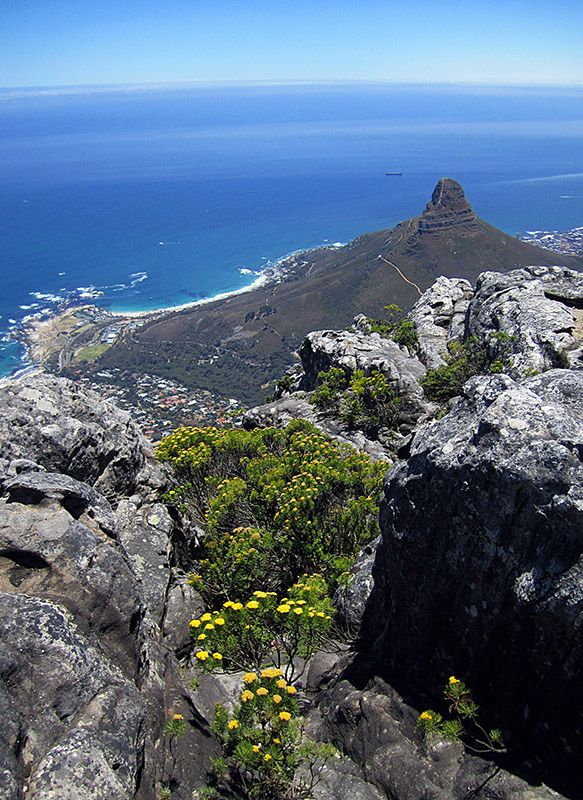 View from Table Mountain - Cape Town, Western Cape. South Africa