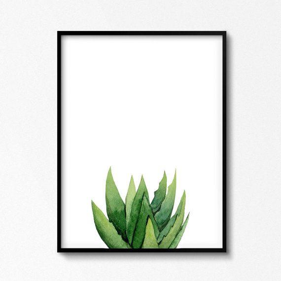 Pintura de suculenta. Acuarela de Aloe. Impresión de por ArtbyASolo