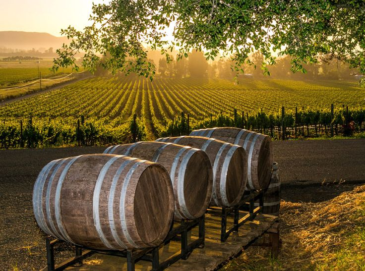 Bildresultat för wine country