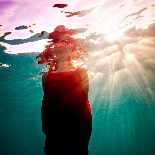 #underwaterphotography #underwater #ocean #bahamas - @elenakalis- #webstagram: Inspiration Art Photography, Ocean Bahamas, Underwater Photos, Thanks Underwaterphotographi, Elenakali, Underwater Photography, Underwaterphotography, Elena Scales, Underwater Ocean