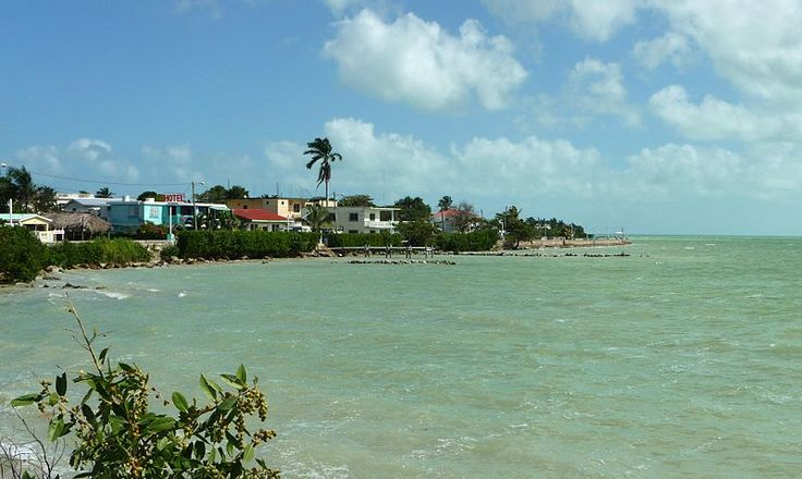 Corozal sea bank (Corozal District, Belize).