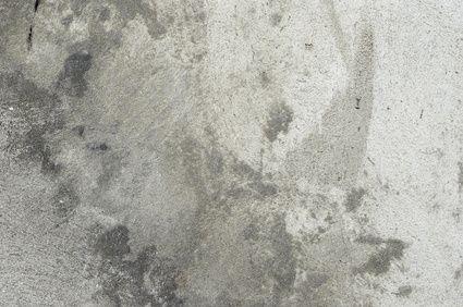 25 Best Ideas About Cat Urine On Pinterest Carpet