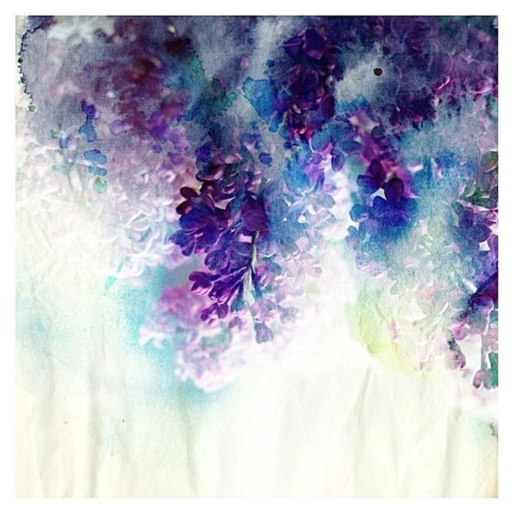 Nightly Blooms Canvas Print