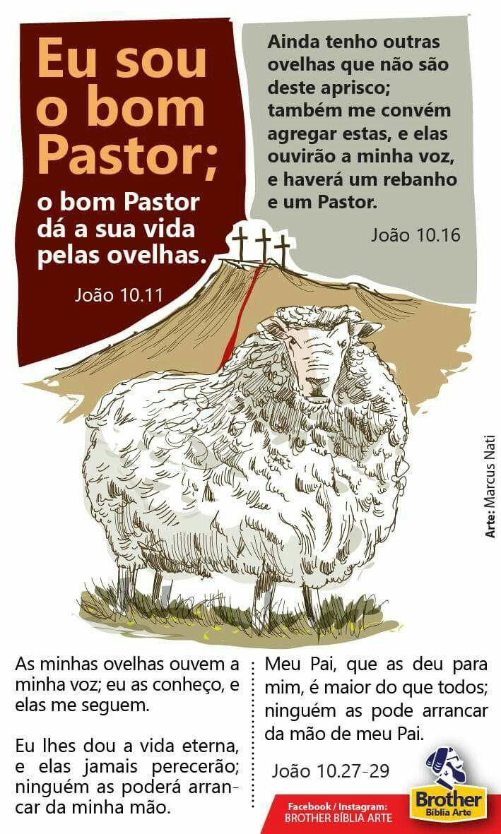 Eu Sou O Bom Pastor Biblia Estudo Fatos Biblicos E
