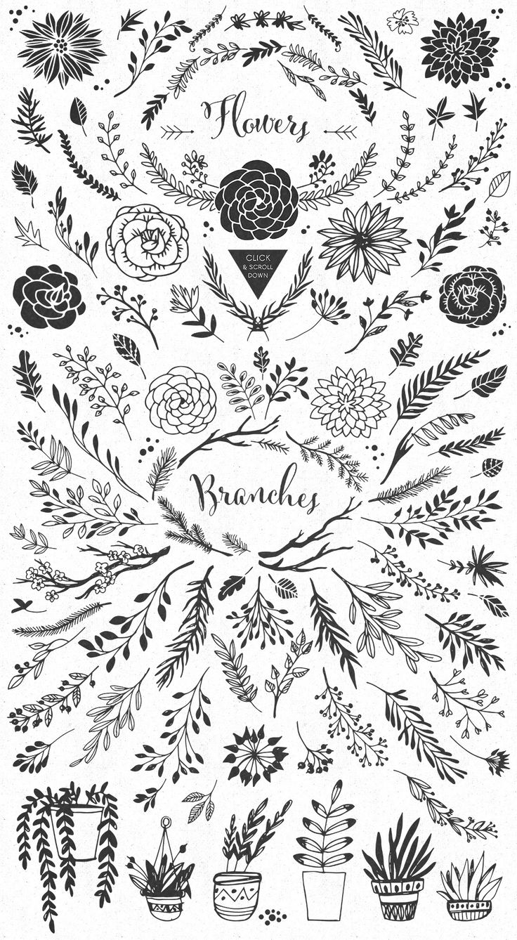 Handsketched Rustic elements by kite-kit on Creative Market