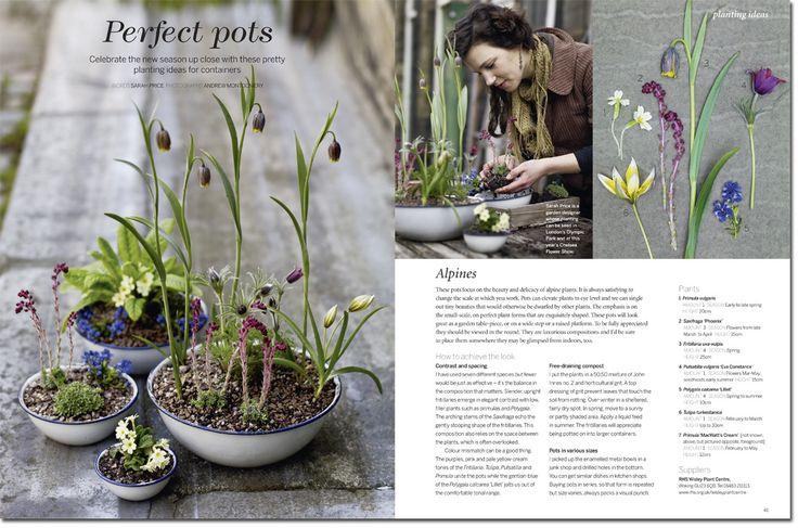 Sarah Price – Gardens Illustrated