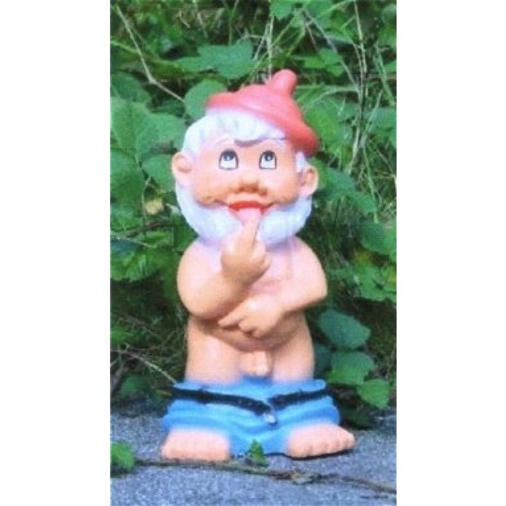 Combat Garden Gnomes: 17 Best Images About Gnomes On Pinterest