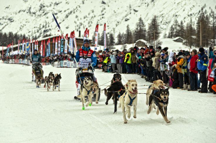 Lundi 18 janvier : La Grande Odyssée Savoie Mont Blanc